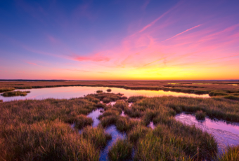 14mm wide angle sunset photo with pastel colored clouds over a still salt marsh.