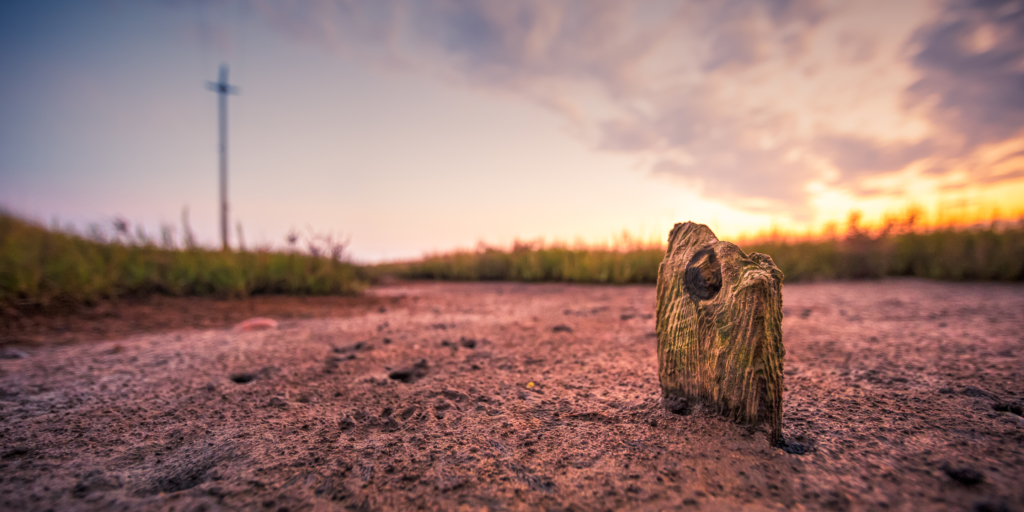 14mm wide angle photo of weathered wood set upon muddy salt marsh at sunset. An out of focus telephone pole appears as a cross in the background.