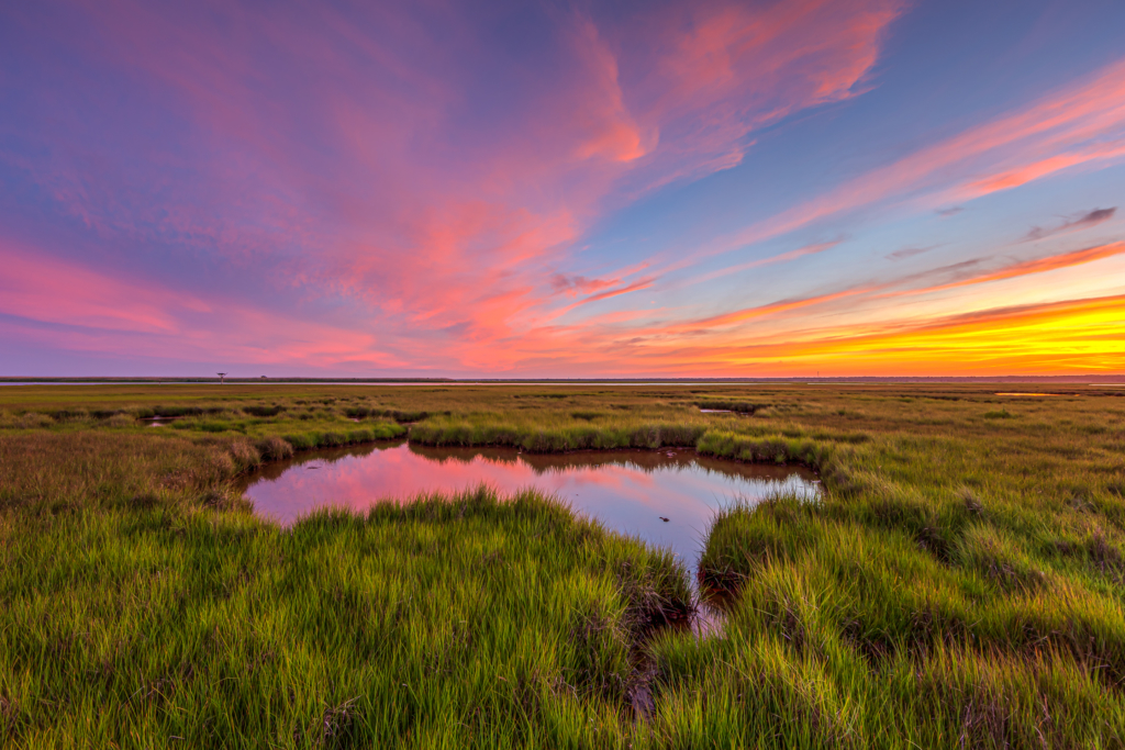 14mm wide angle sunset photo capturing stunning pastel colored cotton candy clouds draped over a bright green salt marsh.