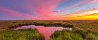 14mm wide angle sunset photograph of colorful pastel clouds overtop green salt marsh and reflected in the tide pool.