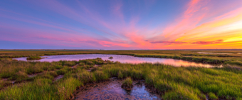 14mm wide angle sunset photo at Cedar Run Dock Road salt marsh. Pinks, yellows, oranges, and blues color the sky over green marsh grasses.