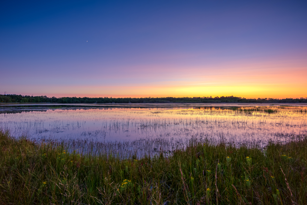 14mm wide angle landscape photo made at blue hour. Clear evening blue skies with a subtle pastel horizon reflect over the still water of Stafford Forge Wildlife Management Area.