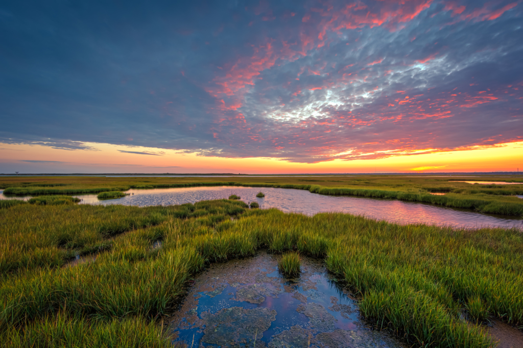 14mm wide angle HDR photo of Cedar Run Dock Road salt marsh right at sunset. Pink tones kiss a low level cloud deck to color up the sky.