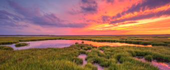 14mm wide angle photograph of a full sky late summer sunset set up smoldering with intense color over the still green salt marsh.