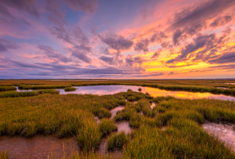 14mm wide angle photo made at sunset over the Cedar Run Dock Road salt marsh. Multilayered clouds fill the sky, backlit by pastel colored clouds as the autumn marsh loses its green color.
