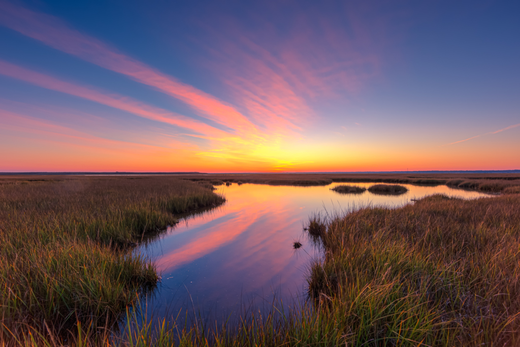 14mm sunset photo made in early November along the Cedar Run Dock Road salt marsh. Yellow, pink, and purple pastels color up gossamer clouds stretched across the sky all reflected in water.