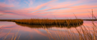 14mm wide angle winter sunset photograph made at the Cedar Run Dock Road salt marsh. A gossamer of pastel clouds stretch across the sky, reflecting upon the still surface of the water. A window of brown marsh grass invites the viewer into the scene.