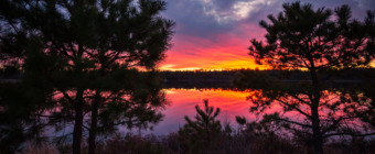 14mm square format photo depicts a fiery sunset over the lake framed between the contrasted silhouettes of two small pine trees.